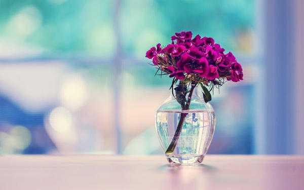 Как поступить с разбитой вазой?