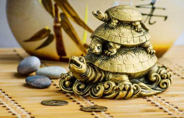 Символом чего является черепаха?