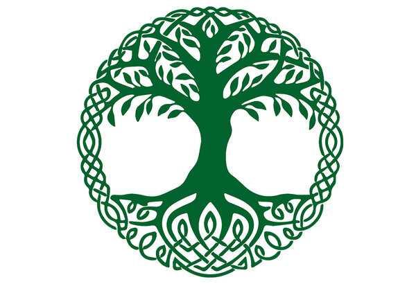 символ древо жизни