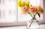 Разбитая ваза – счастливая жизнь или потеря: что говорят приметы?