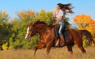 К чему приснилось кататься на лошади верхом
