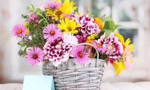 Искусственные цветы в доме – приметы