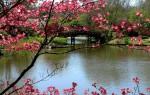 Народные приметы на 1 апреля – день Дарьи Весенней