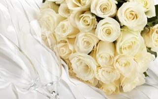 К чему дарят белую розу, или как признаться в чувствах без слов?