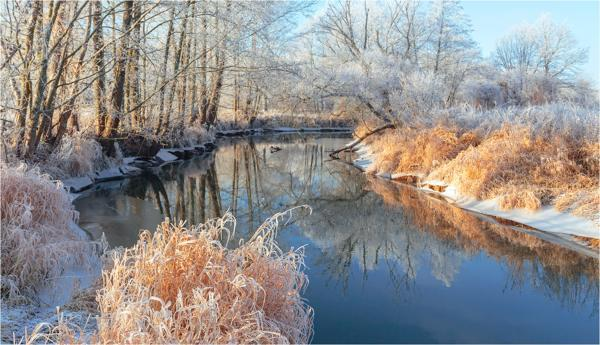 река в ноябре