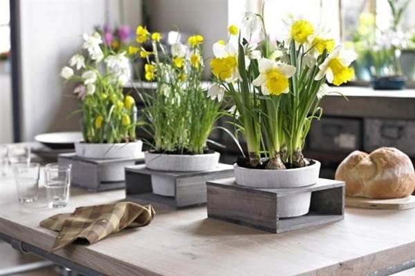 какие цветы нельзя держать в доме приметы
