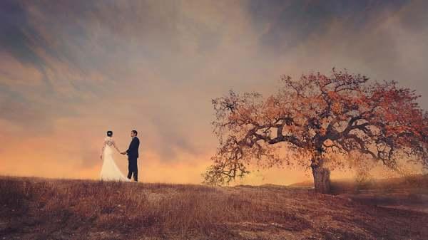 сонник видеть себя в свадебном платье замужней женщине