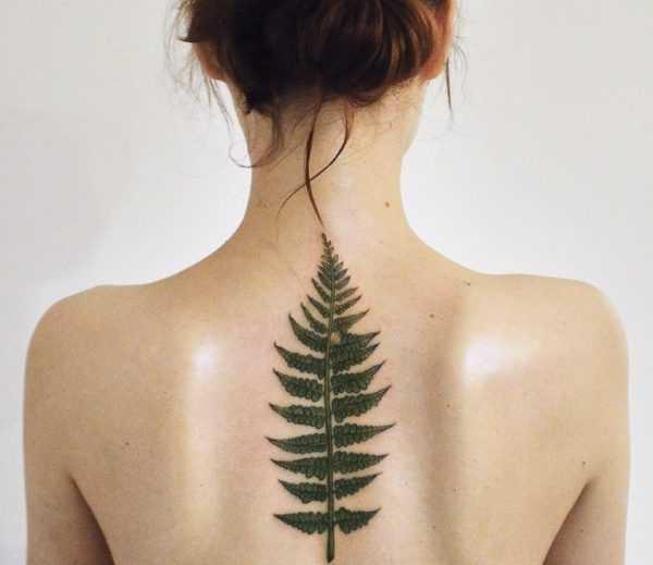 Татуировка папоротника