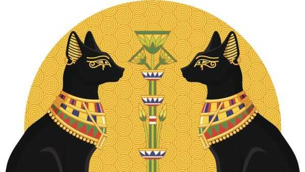 Символ кошки в Египте