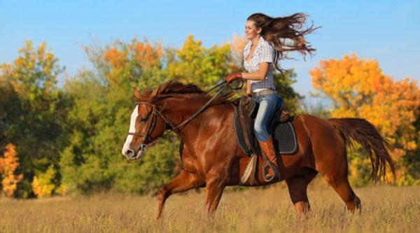 К чему снится кататься на лошади